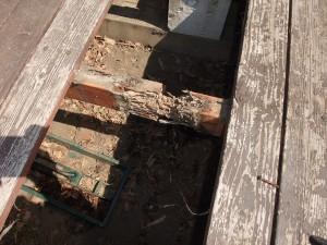 シロアリによるウッドデッキの傷みが激しい。住まい部分にシロアリが侵入していないか確認が必要です。