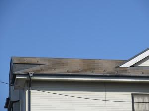 屋根によく見られる苔。このまま放置しておくと雨漏りの原因に。